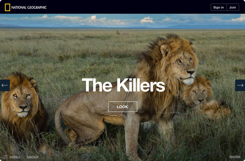 ng-serengeti-lion-killers-noshadow
