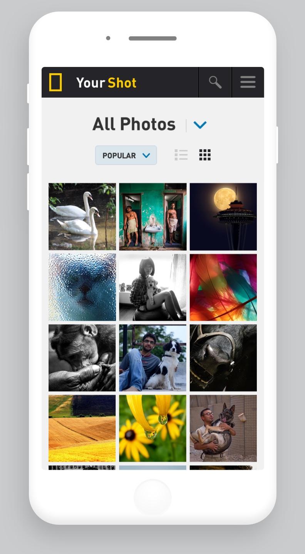 all-photos-grid